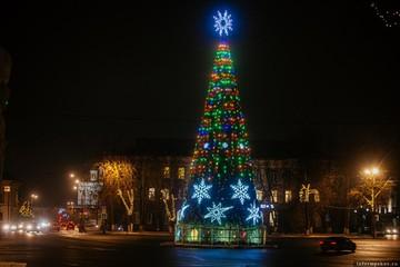 Псковичи обсуждают идею установки живой новогодней ели в центре города