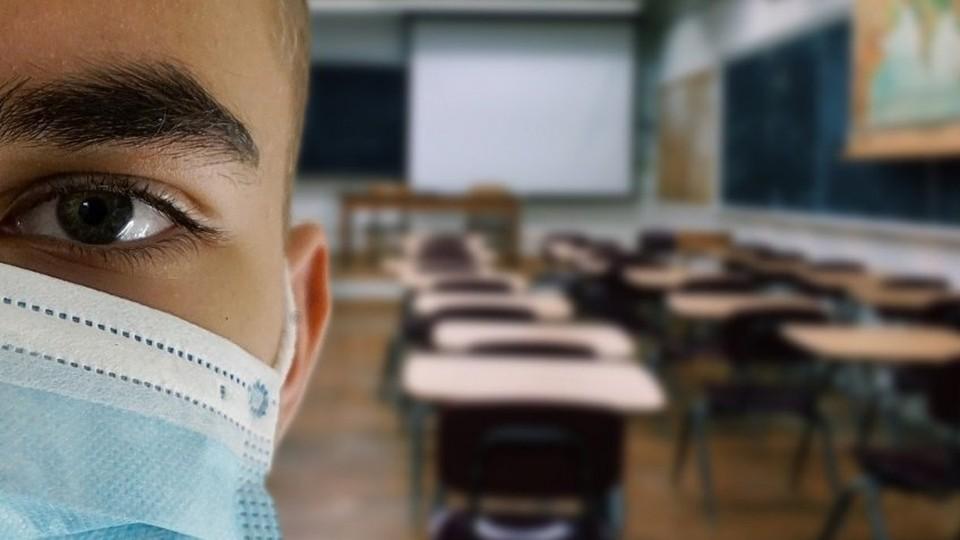В Молдове все больше студентов и школьников переходят на обучение онлайн. Фото: Alexandra_Koch