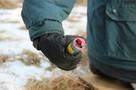 В Хабаровском крае провели опасный эксперимент с горящей петардой в руке