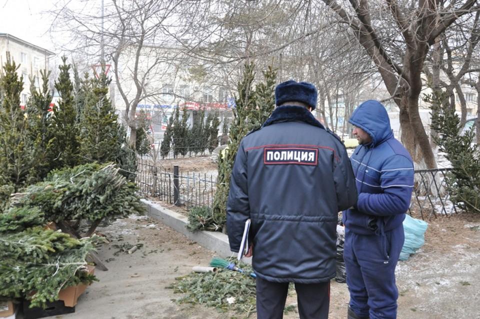 Полиция Владивостока составляет на незаконных торговцев елями административные протоколы. Фото: пресс-служба УМВД России по городу Владивостоку