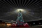 Новогодние пальмы, зимние пляжи и песковик: Чем удивят туристов на праздниках курорты Черноморского побережья
