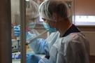 """Россия разрабатывает первый в мире """"антидот"""" от коронавируса: что известно"""
