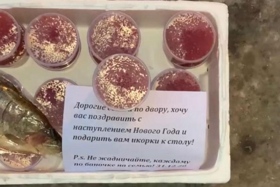 В одном из дворов Мурманска появился ящик с красной икрой и рыбкой. Фото: vk.com/murmansk.region