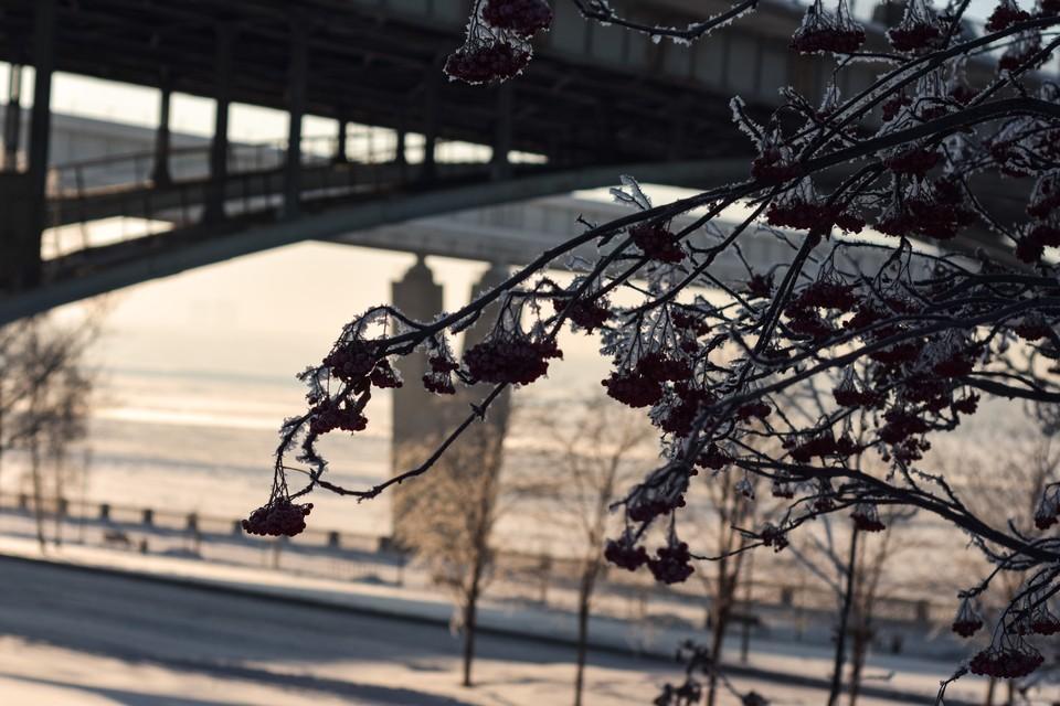 Морозы не собираются покидать Новосибирск