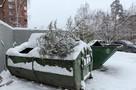 Разлагаются 200 лет и выделяют газы: Почему необходимо утилизировать новогодние елки