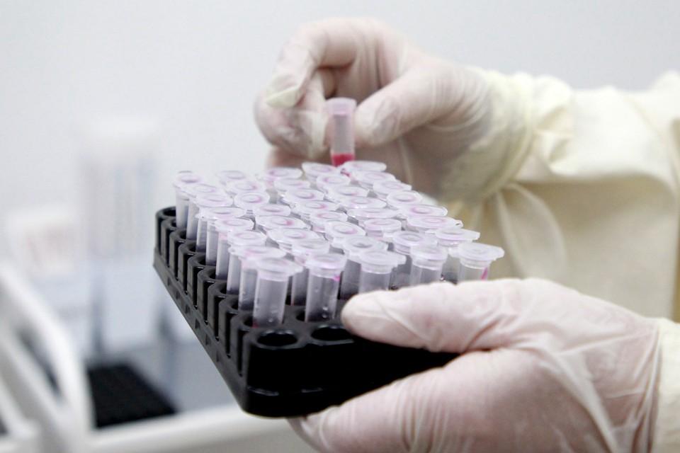 С начала пандемии COVID-19 в республике подхватили 14 362 человека.