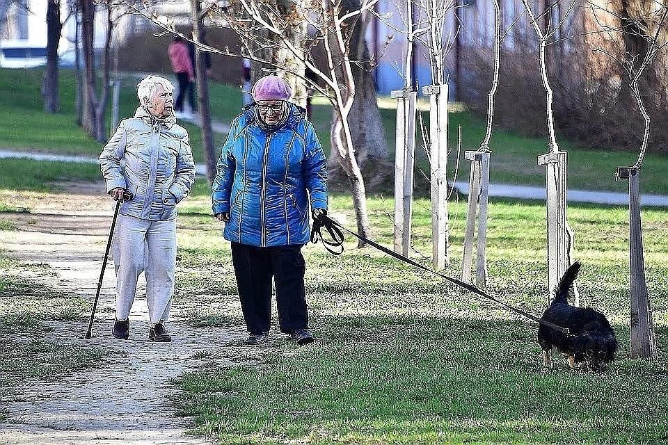 В Совфеде назвали помехи для дополнительной индексации пенсий
