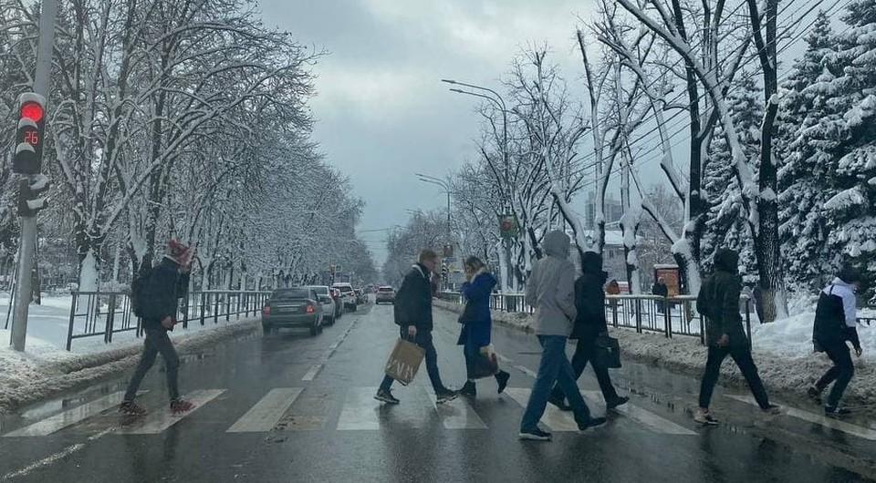 Фото: КП-Кубань