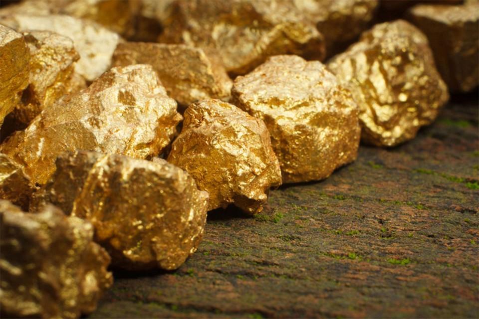 Хабаровский край вошел в пятерку самых продуктивных по добычи золота регионов Дальнего Востока