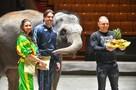 В Большом Московском цирке отметили день рождения слонихи-вундеркинда