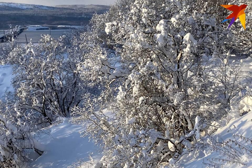 В Мурманскую область пришли сильные морозы.