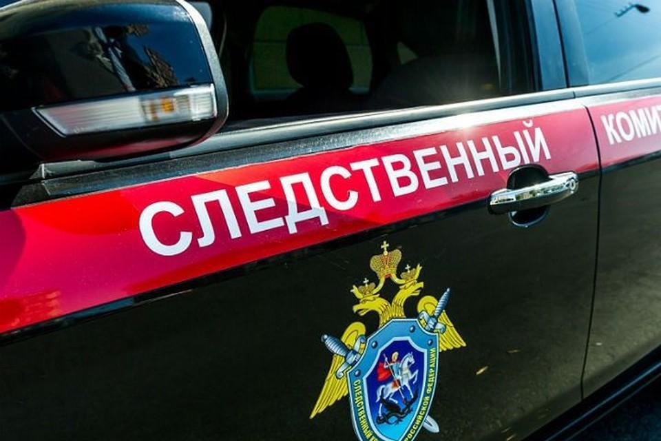 Следователи проверят новосибирскую школу №211, где охранник жестоко задержал ребенка.