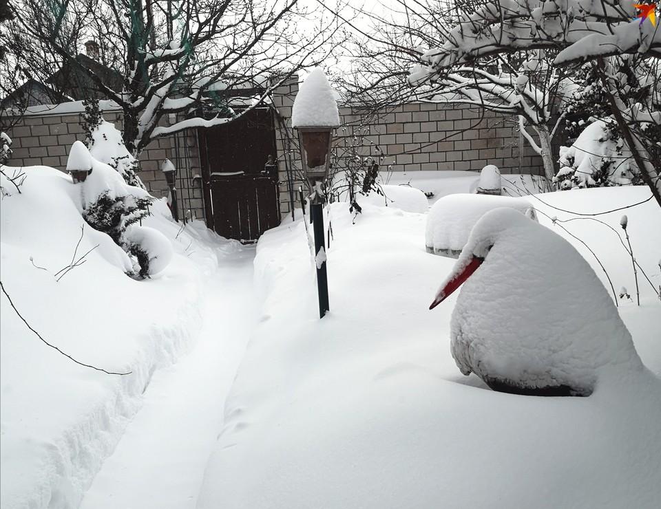 Кажется, зима в феврале решила отыграться за прошлый год и свалить на Беларусь двухлетний запас снега.