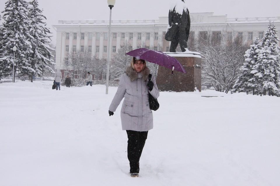 Снегопад в Алтайском крае 18 и 19 февраля 2021 года