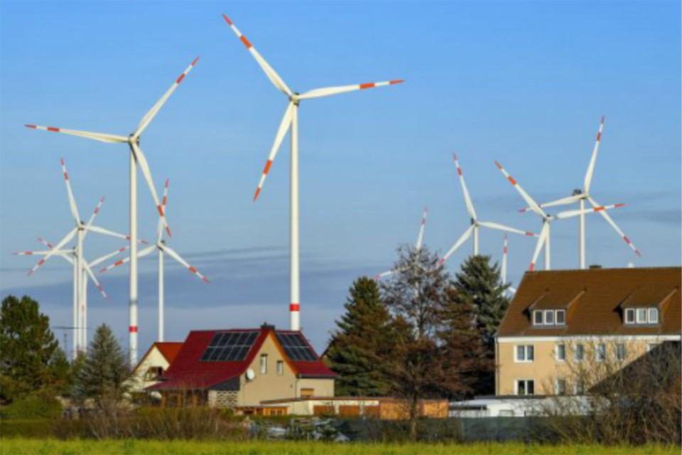Оказывается, зеленая энергетика не так уж и полезна для природы. Фото: Patrick PLEUL/Global Look Press