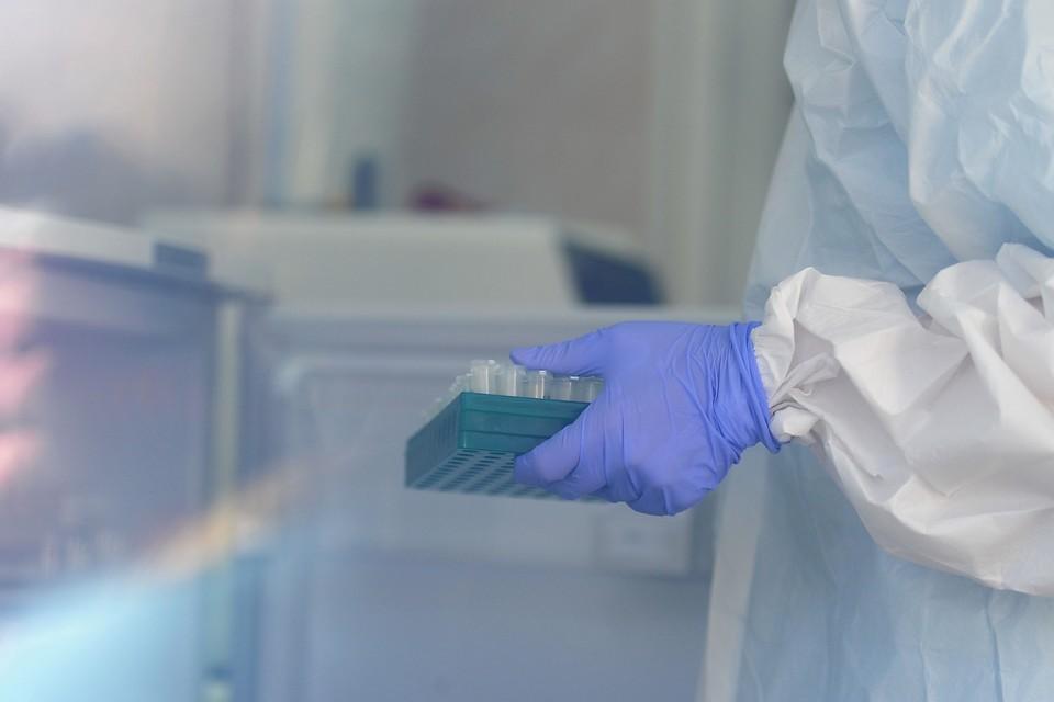 С начала пандемии коронавирус подхватили 46 276 местных жителей.