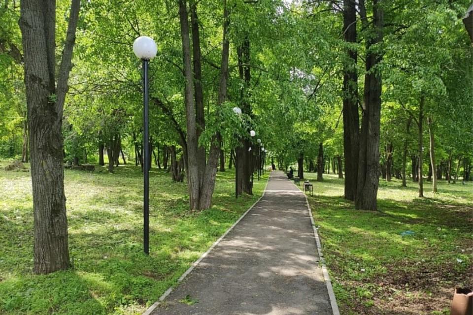 Проголосовать за любимое место отдыха можно будет в конце апреля. Фото: kirovreg.ru