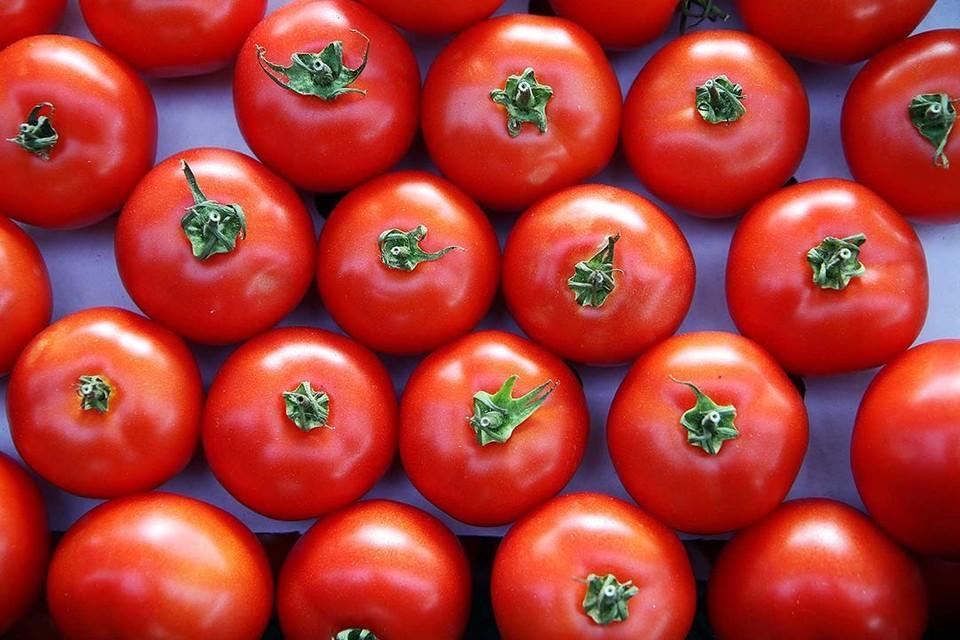 Стало известно, какое место заняла Беларусь по экспорту помидоров.