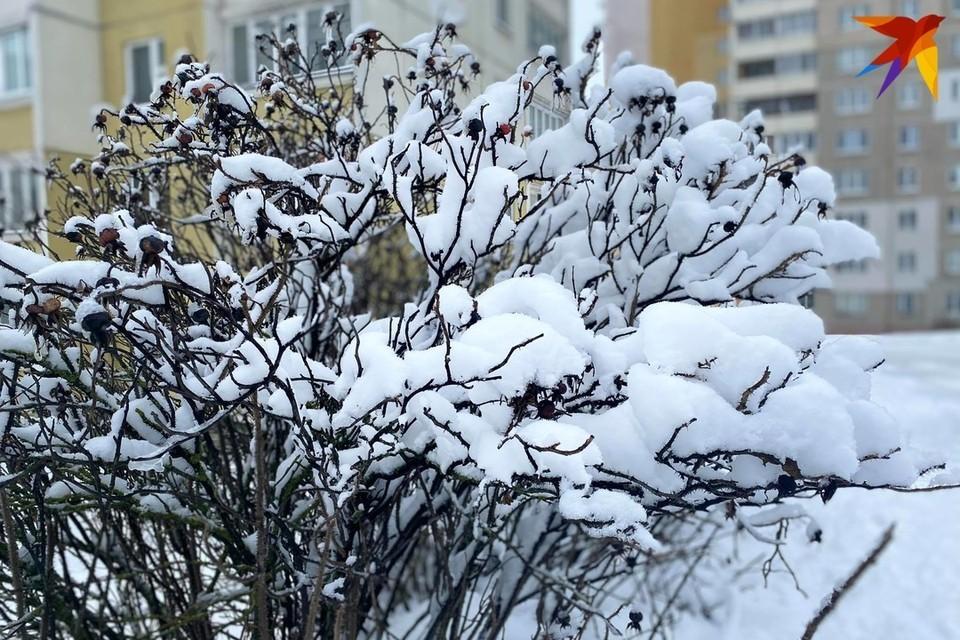 Снег может быть мягким и мокрым, когда мы все дружно лепим снеговиков, а может быть твёрдым, когда летящей походкой можно пробежаться по насту.