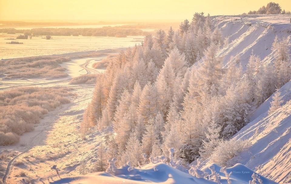 Фото: Павел Канев
