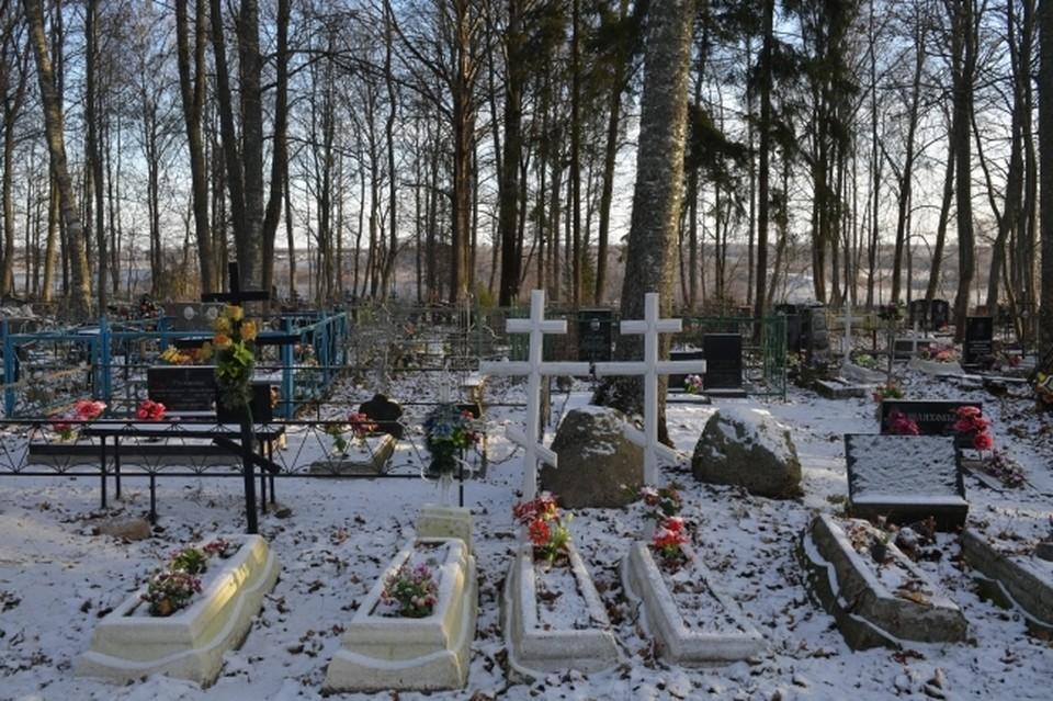 Жильцы многоквартирного дома были вынуждены смотреть на похоронные процессии.