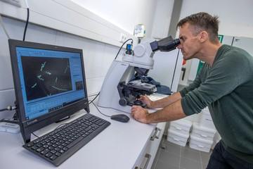Ученые предложили способ снижения смертности от коронавируса