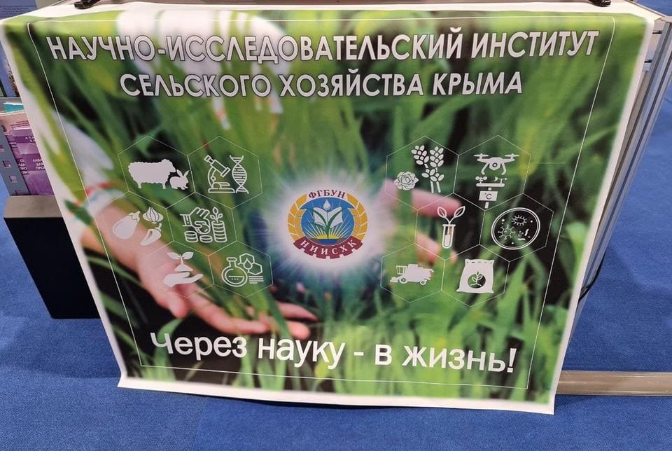 """Три предприятия представляют Крым на фестивале """"От винта!""""Фото: Крымская газета"""