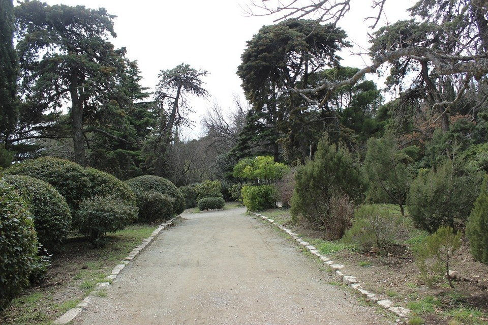 Строительство в парке ведется с января текущего года