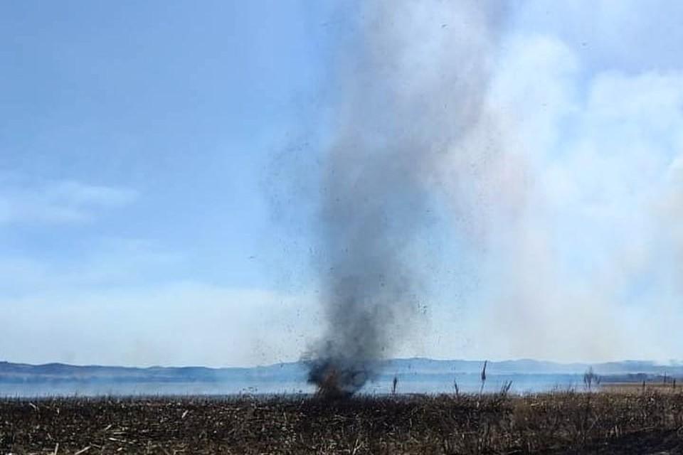 Вихрь возник на кукурузном поле. Фото: Instagram/vestnik_p, iamkachn