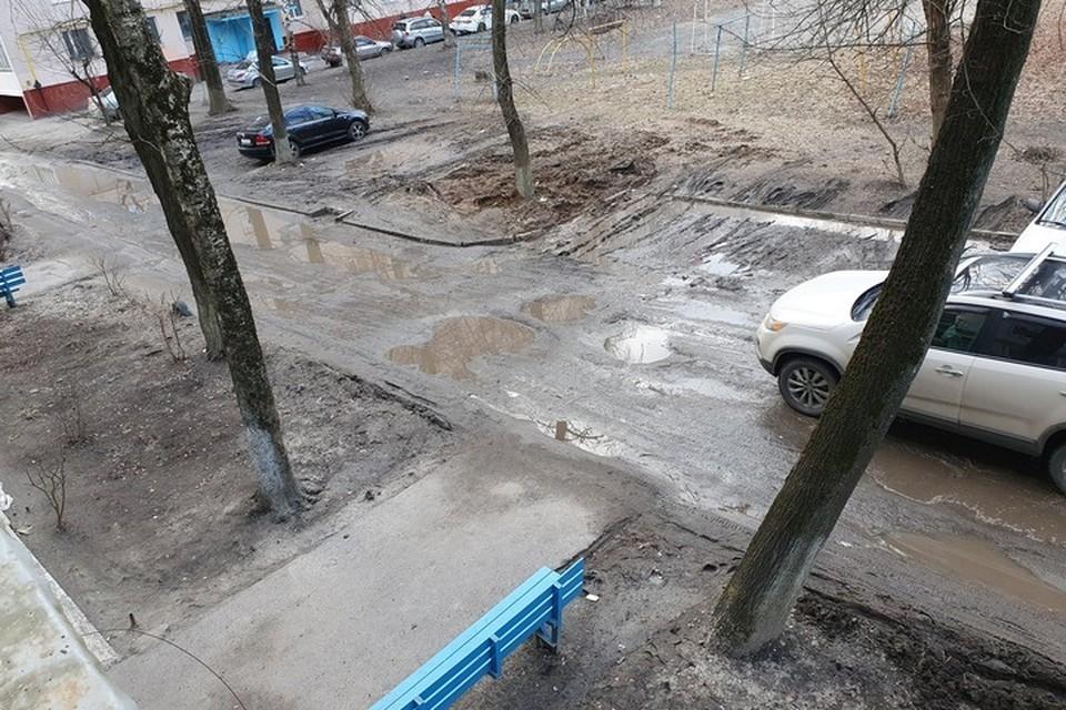 Фото: «Подслушано Брянск» в vk.com.