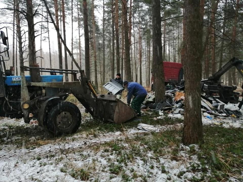 В Твери убрали мусор в Комсомольской роще Фото: ПТО