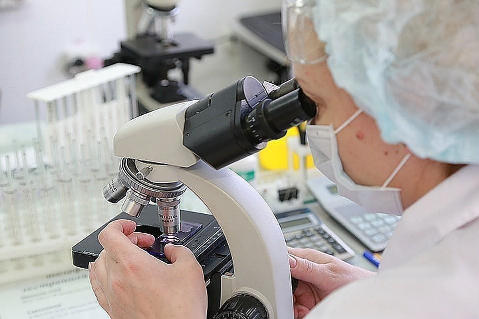 В России зарегистрировали первый экспресс-тест для привившихся от коронавируса