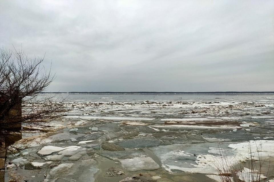 Ледоход в Хабаровском крае: река Хор пошла на семь дней раньше обычного