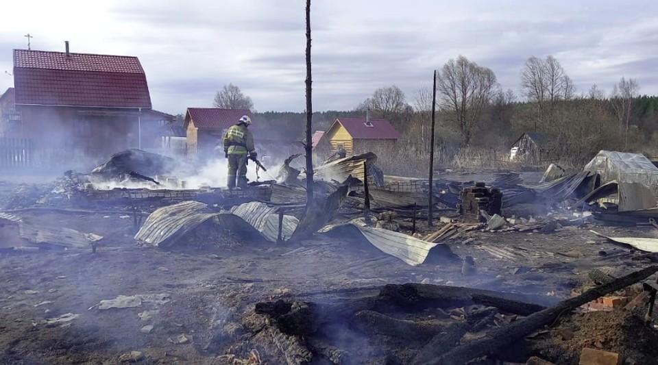 Двенадцать дачных домов сгорели дотла в Богородском районе
