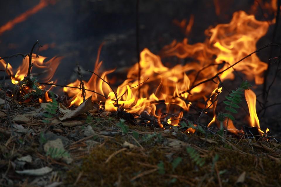 Один пожар потушили за минувшие сутки в Иркутском районе