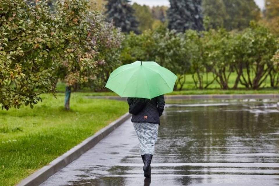 Предстоящий май в Кировской области ожидается холодным и дождливым.