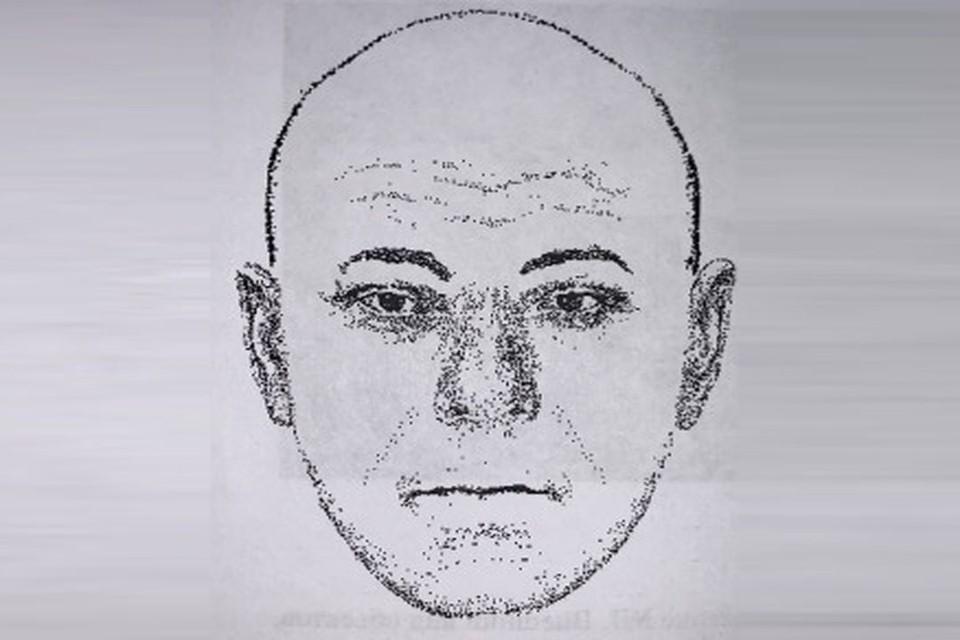 Тело мужчины было найдено на обочине дороги между селом Локти и селом Белоярка. Фото: СУ СК По Новосибирской области