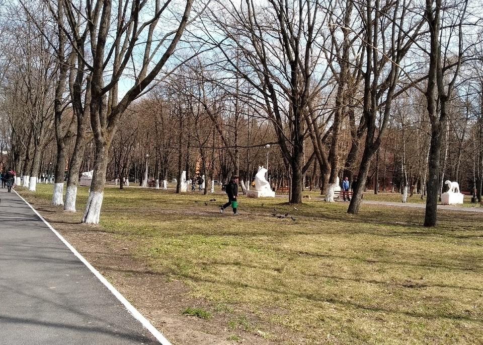 Первый общегородской субботник прошел в Курске 10 апреля