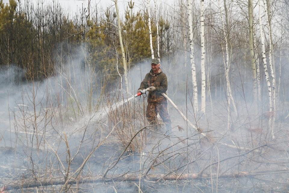 Такие меры приняты в связи с ростом возгораний