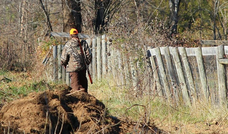 При охотниках были обнаружены туши сайгаков, рога и незарегистрированное ружье