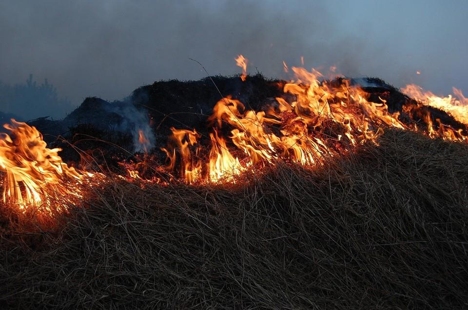 С 26 по 28 апреля на территории района объявлен режим повышенной готовности по ландшафтным пожарам