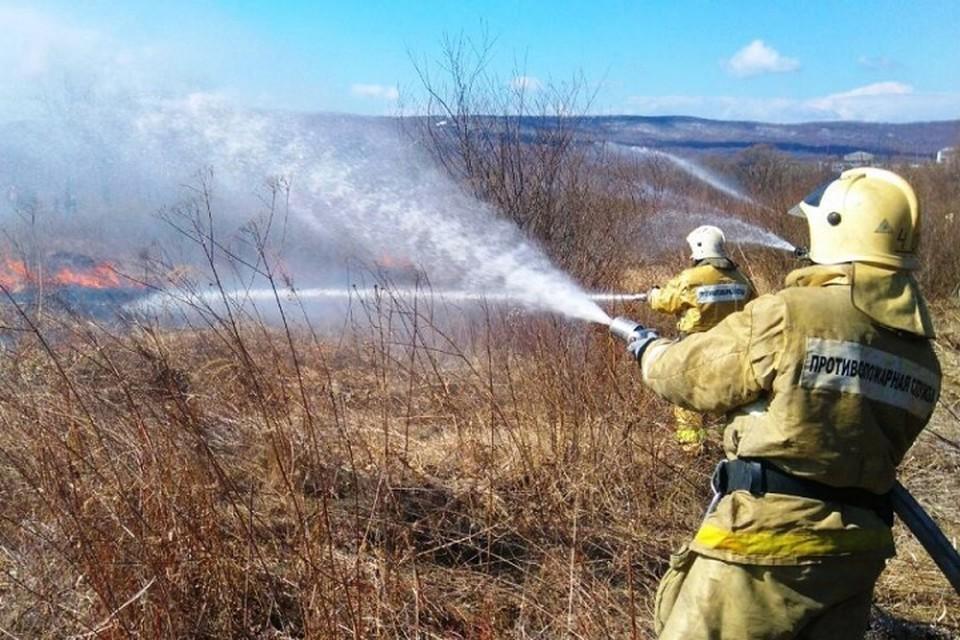 В Хабаровском крае за день произошло семь лесных пожаров