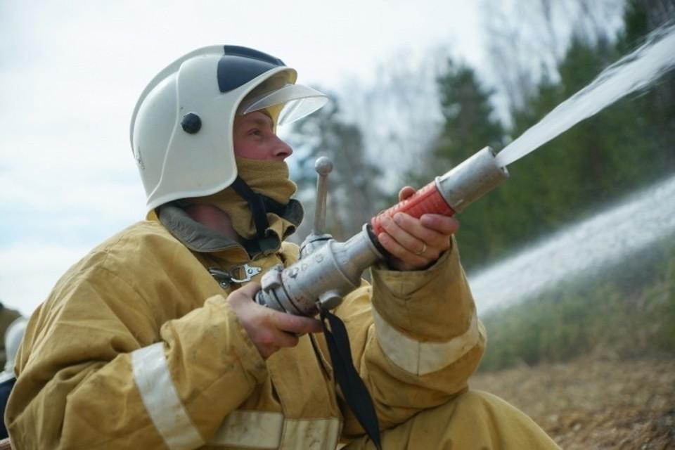 Ситуация с пожароопасностью в Новосибирской области находится на особом контроле.