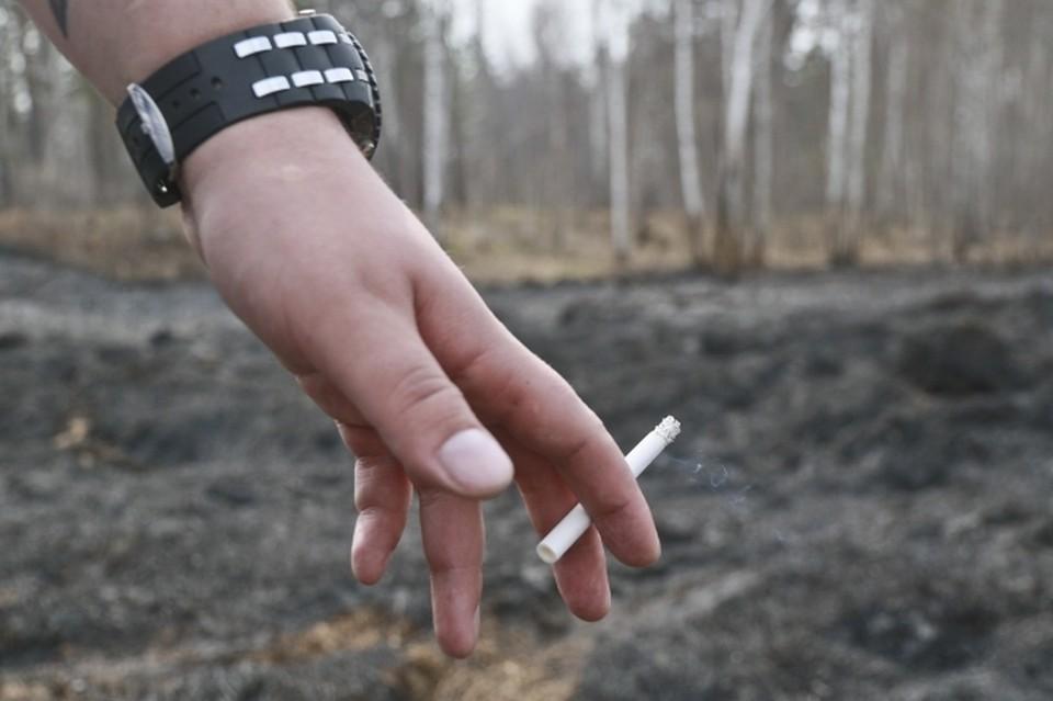 Пока все потушенные лесные пожары происходили по вине людей