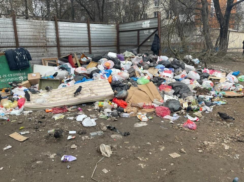 В Орле до сих пор не могут решить проблемы с вывозом ТКО. Фото: пресс-служба Орловского горсовета
