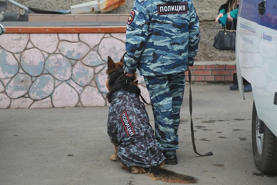 Стало известно, зачем силовики пришли с обыском в Красноярский научный центр