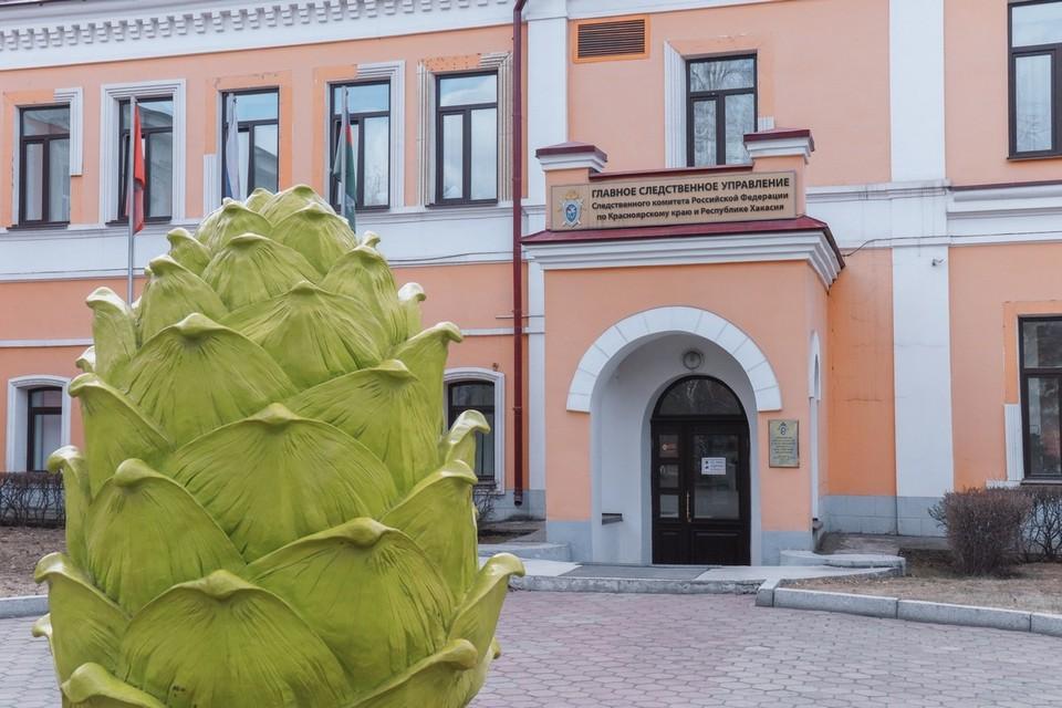 В Красноярске неизвестный пытался похитить девочку