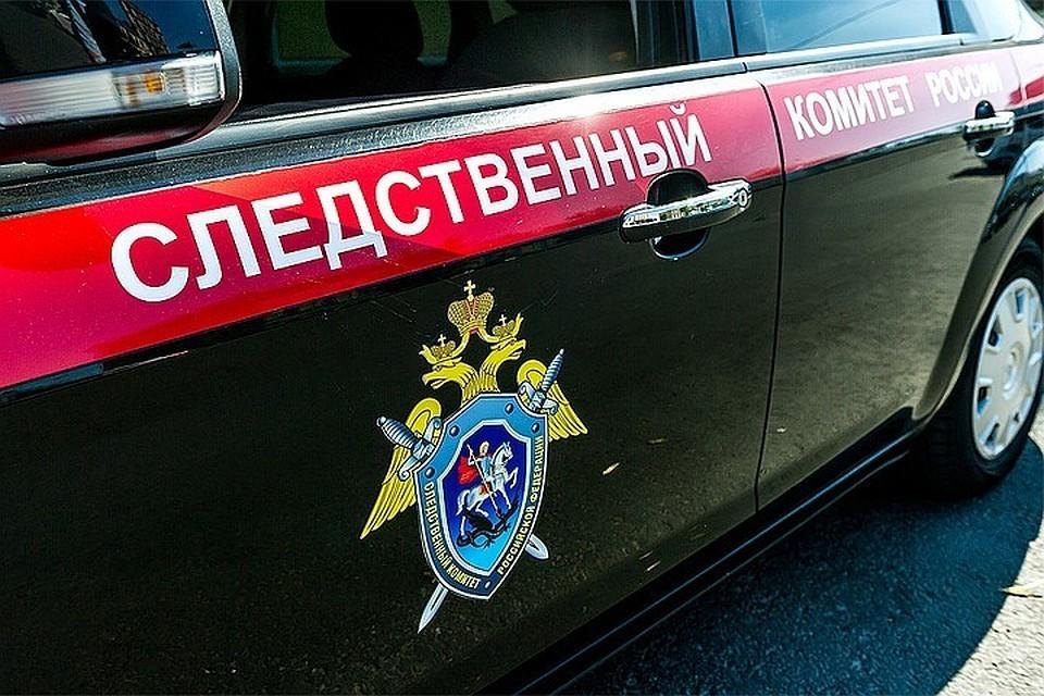 СК РФ поддержал проект запрета публичного сравнения действия СССР с нацистской Германией
