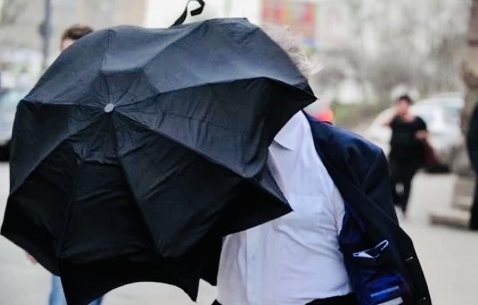 Синоптики рассказали о погоде в Твери 28 мая.