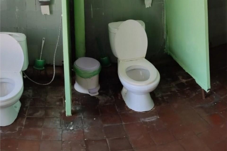 Приморцы делятся фотографиями школьных туалетов чтобы добиться их ремонта. Фото: promonado.ru/domestos-schools